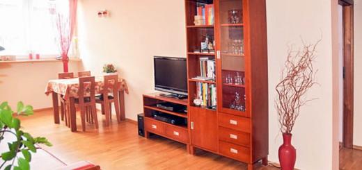 na zdjęciu urządzony salon w mieszkaniu na sprzedaż