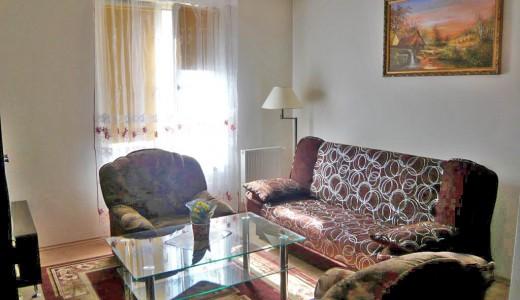 widok na luksusowy salon w mieszkaniu do wynajęcia we Wrocławiu