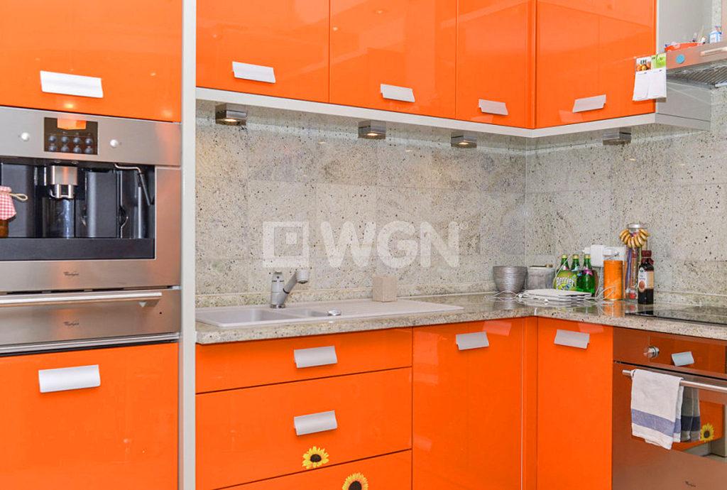nowoczesny kolory w kuchni mieszkania do wynajmu Wrocław Krzyki
