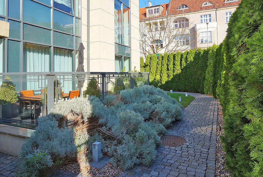 zadbane i zagospodarowane zielenią otoczenie budynku, w którym znajduje się oferowane na wynajem mieszkanie Wrocław