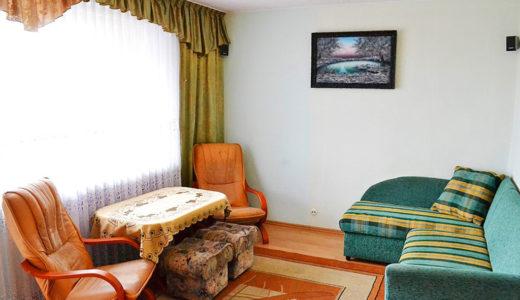 fragment salonu w mieszkaniu do wynajęcia Wrocław Psie Pole