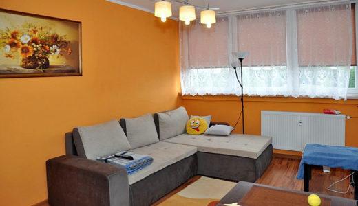 komfortowy salon w mieszkaniu do wynajmu Wrocław okolice