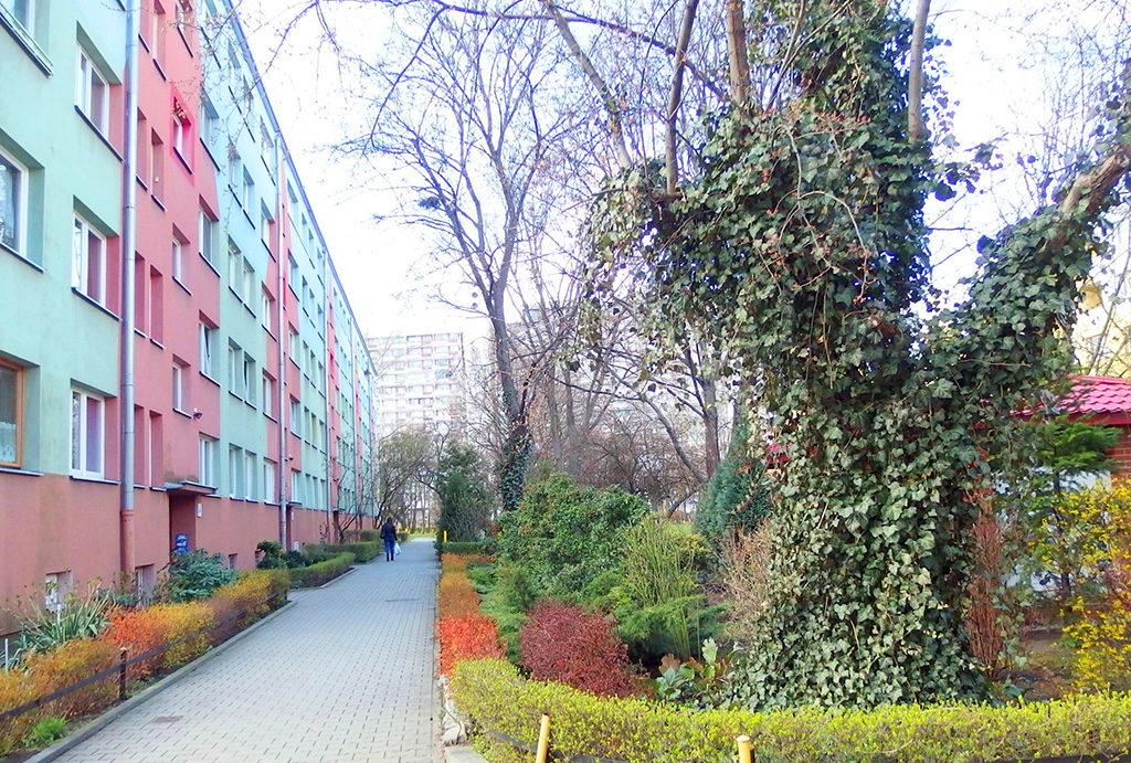 widok od strony osiedla na budynek, w którym znajduje się oferowane na sprzedaż mieszkanie Wrocław Krzyki