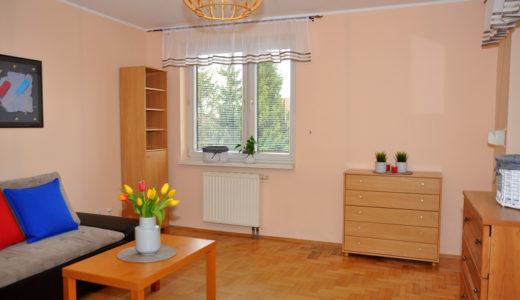 salon w mieszkaniu do wynajęcia Wrocław Krzyki