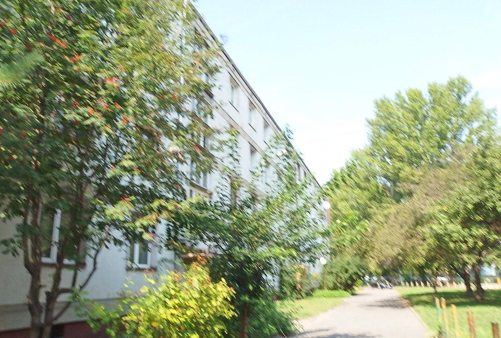 malownicza, zielona lokalizacja, gdzie znajduje się oferowane na sprzedaż mieszkanie Wrocław Krzyki