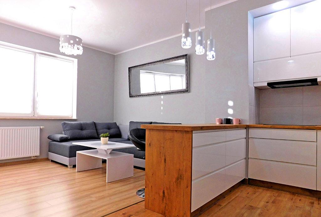 widok od strony aneksu kuchennego na salon w mieszkaniu do wynajmu Wrocław (okolice)