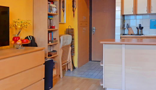na pierwszym planie salon, w oddali hol w mieszkaniu do sprzedaży Wrocław Krzyki