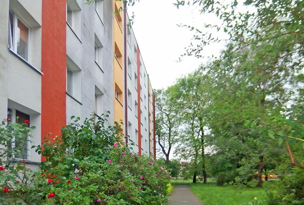 zielone osiedle, na którym znajduje się oferowane na sprzedaż mieszkanie Wrocław Krzyki