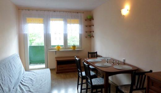 komfortowy pokój dzienny w mieszkaniu do wynajmu Wrocław Stare Miasto